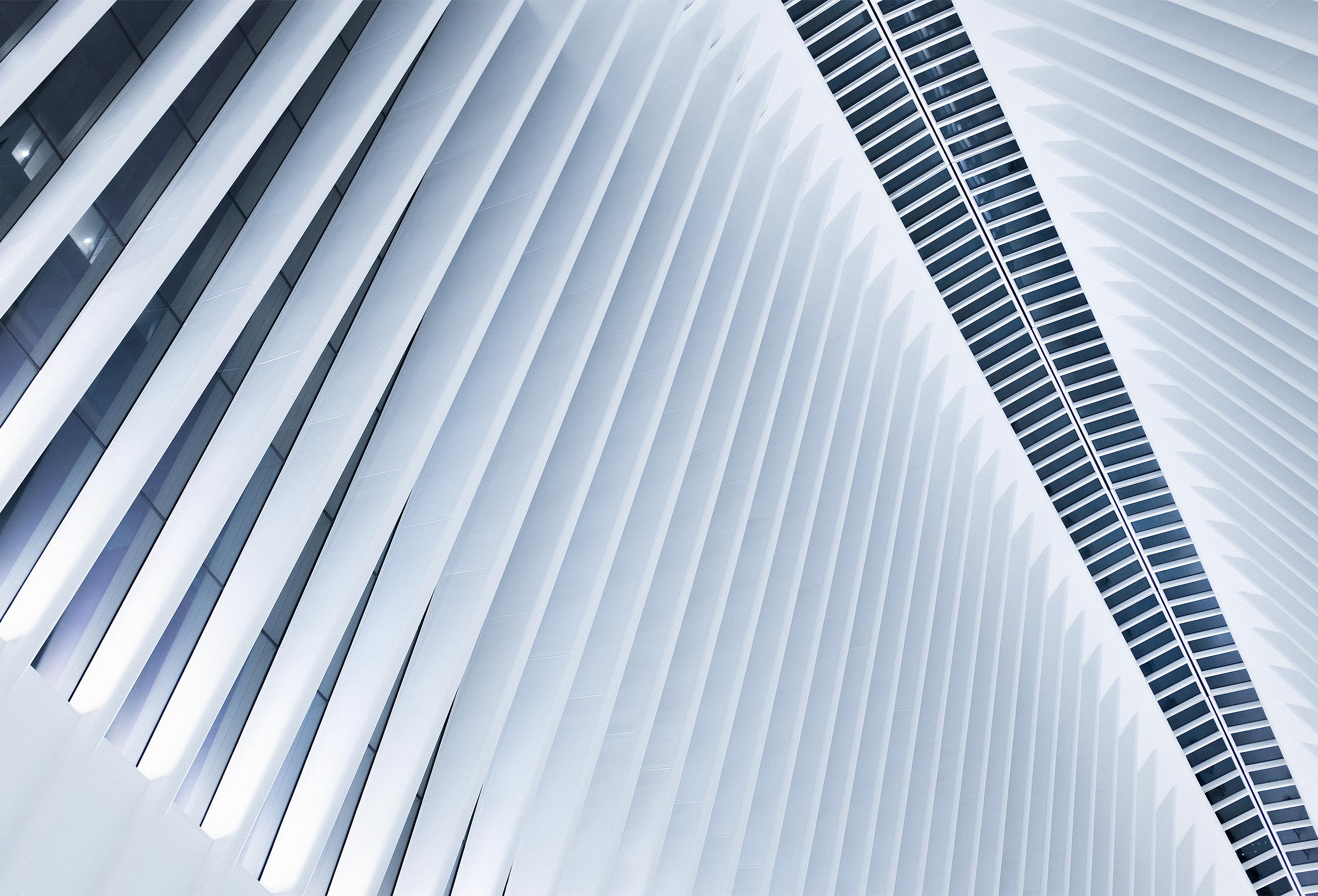 Oculus by architectural photographer Kristopher Grunert