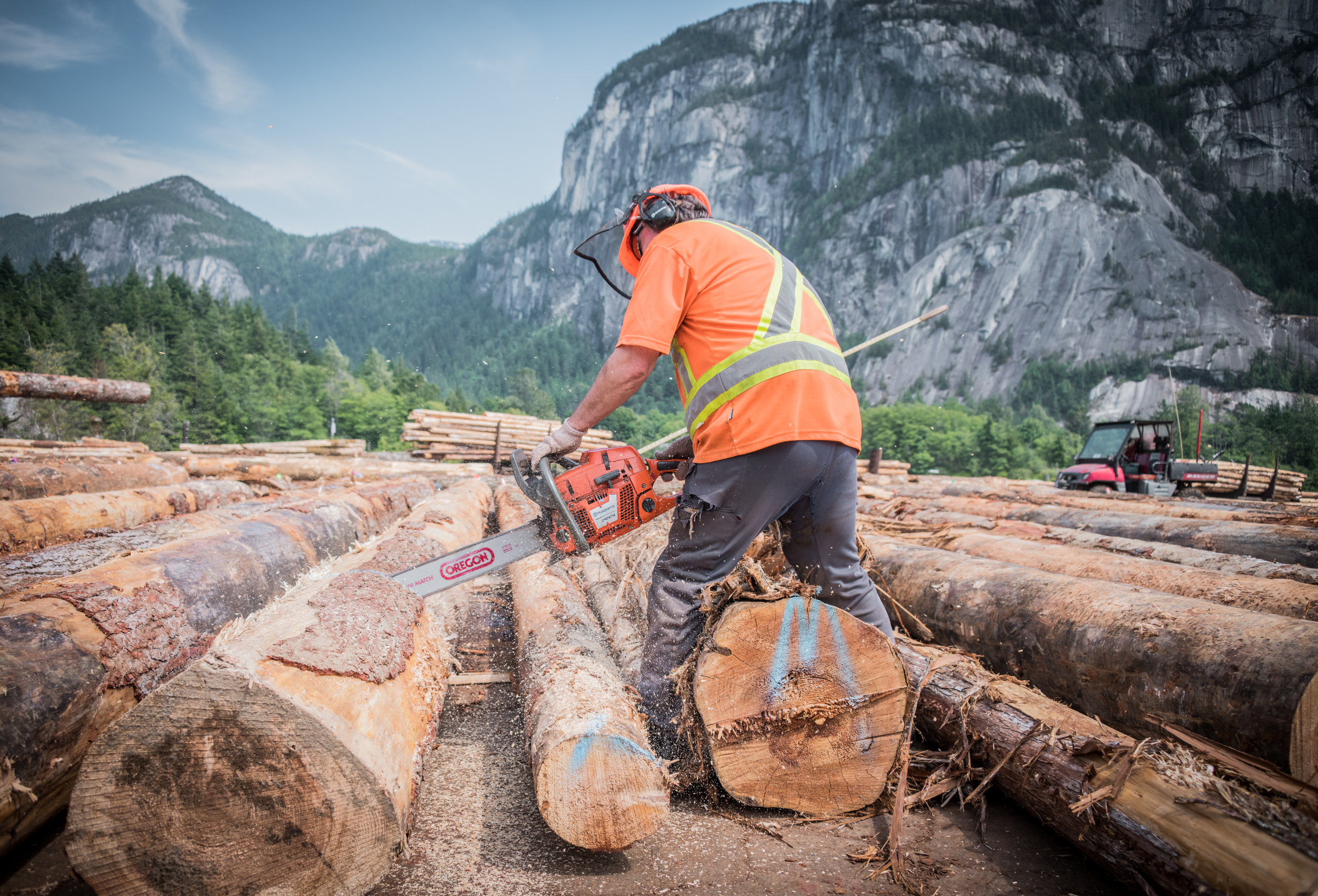 Worker cutting log at sorting facility in Squamish, BC by corporate  industrial photographer Kristopher Grunert.